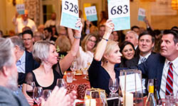 Gourmet & Grapes attendees seated at tables hold up their bid cards during the auction